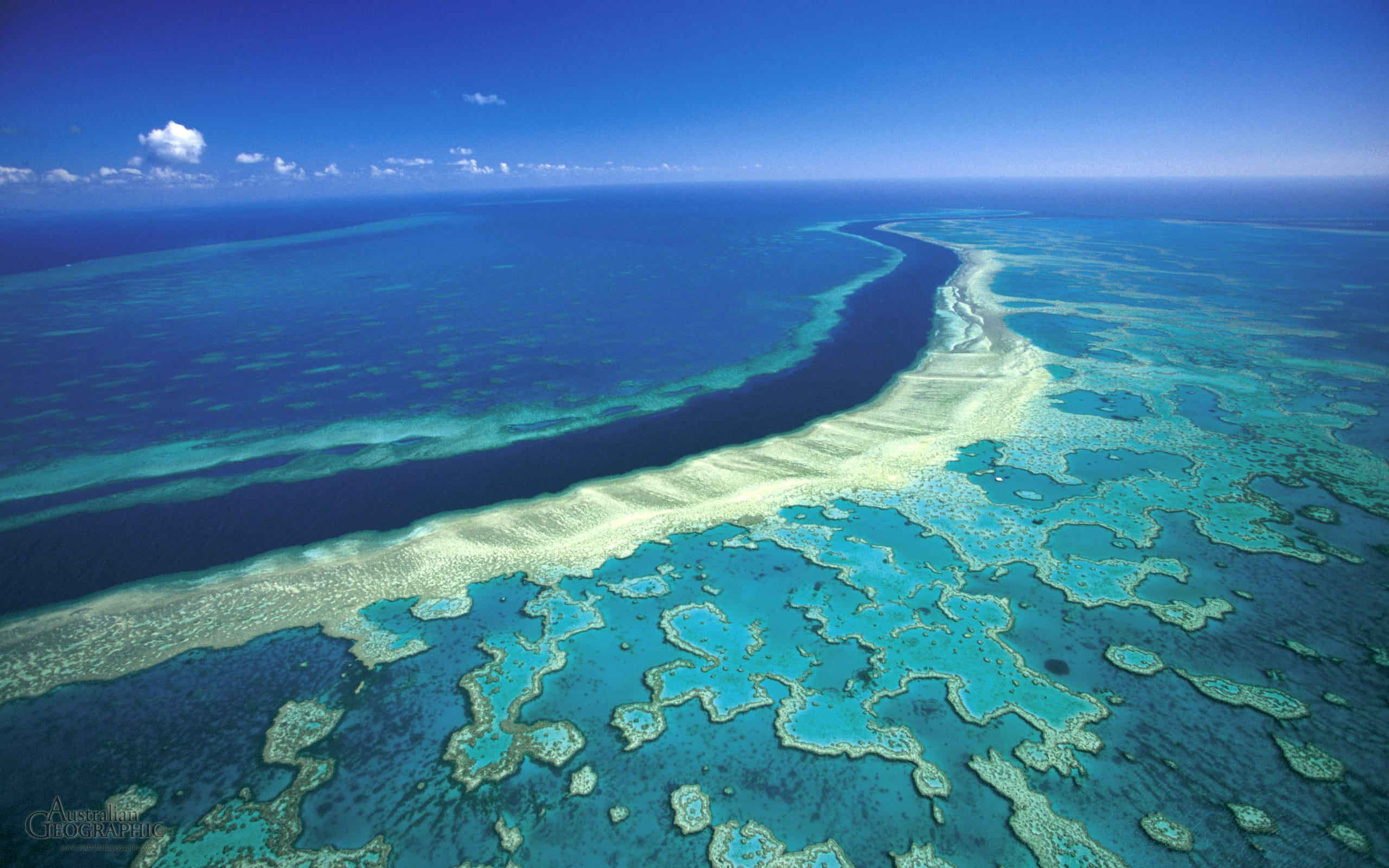 great barrier reef | Places to See Before It's Too Late