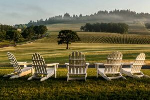 10 Wineries With A View As Good As The Wine