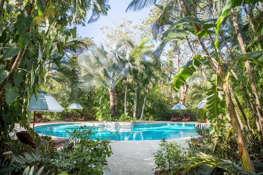 costa rica surf hotel in nosara