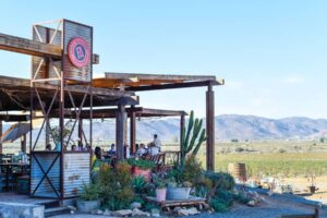 Guadalupe Valley, Mexico / 24 Hours in Baja's Wine Country