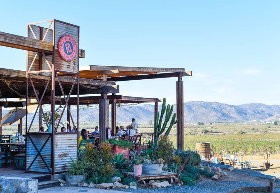 Finca Altozano Restaurant / Guadalupe Valley, Mexico / 24 Hours in Baja's Wine Country