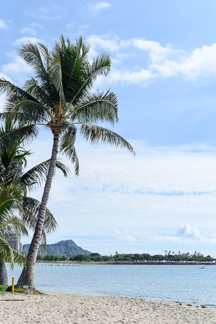 Ala Moana Park Beach / Honolulu, Hawaii
