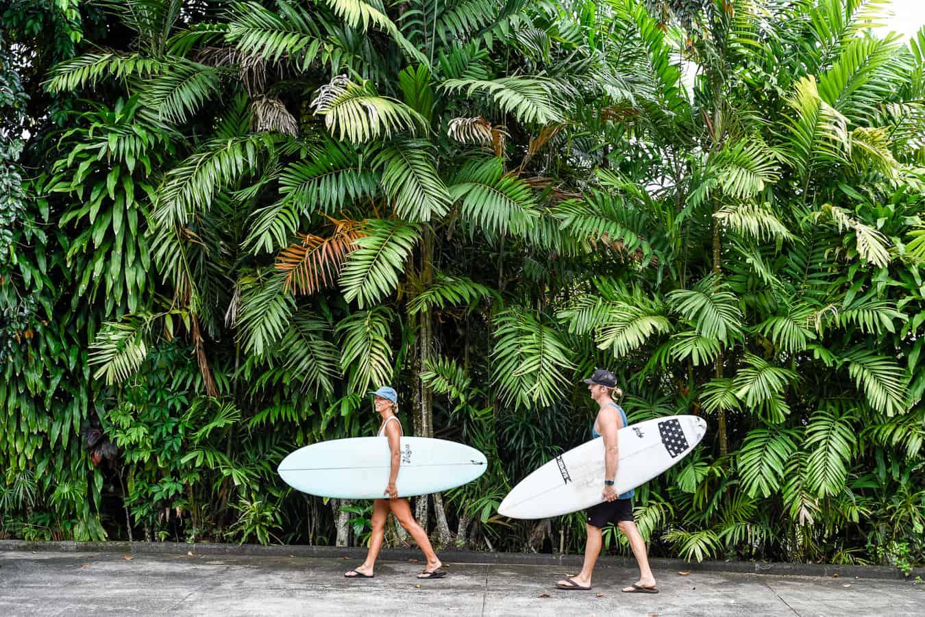 samoa surf trip lush palm