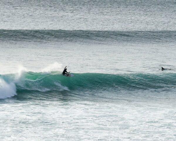 surf apps