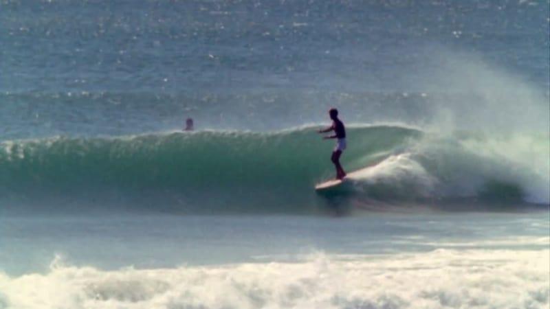 cape st francis surf