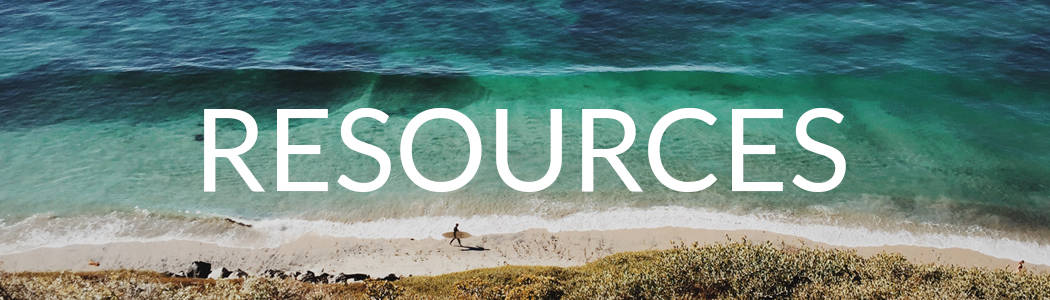 lush palm surf travel resources