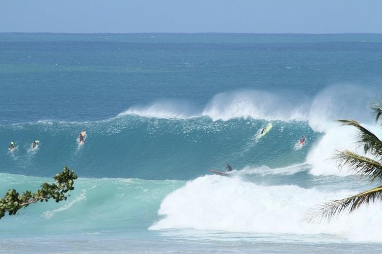 surfing puerto rico tres palmas