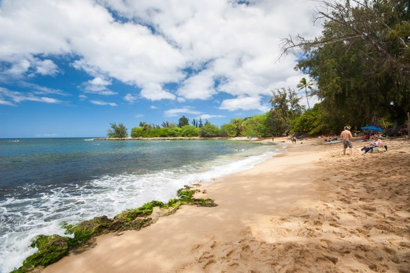 surf trips for beginners north shore oahu