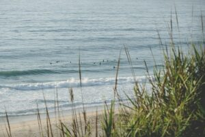 surfing portugal santa cruz