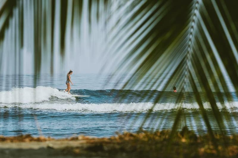 saladita mexico surf