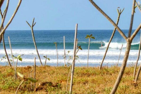 playa guiones surf