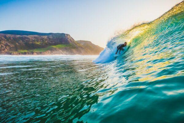 tiny whale lodge portugal surf