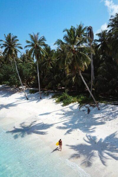 hollow trees resort mentawai islands