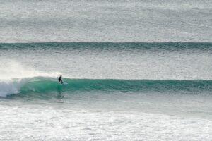 lush palm surf club