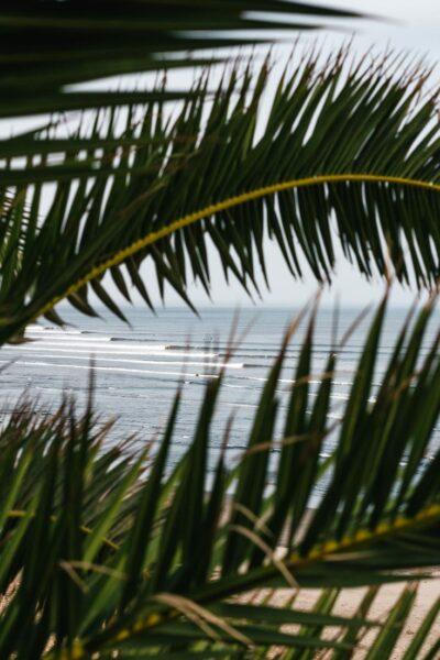 surf camp chicama peru