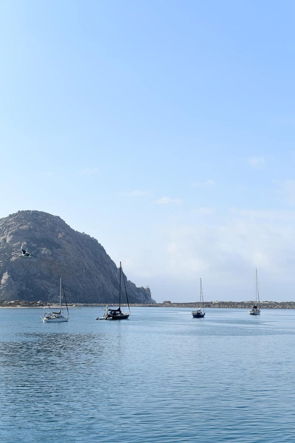 boats in morro bay harbor