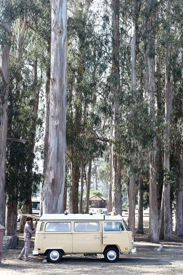 beach camping california morro bay campsite