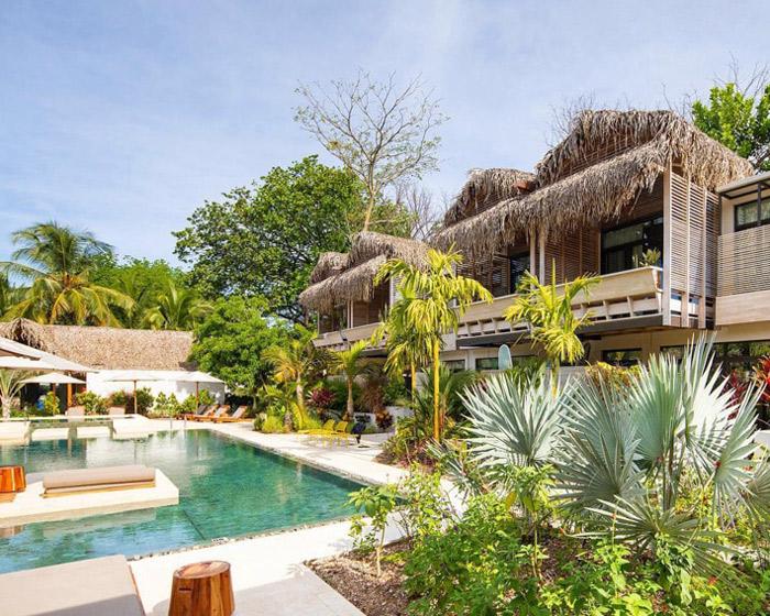 the gilded iguana surf hotel