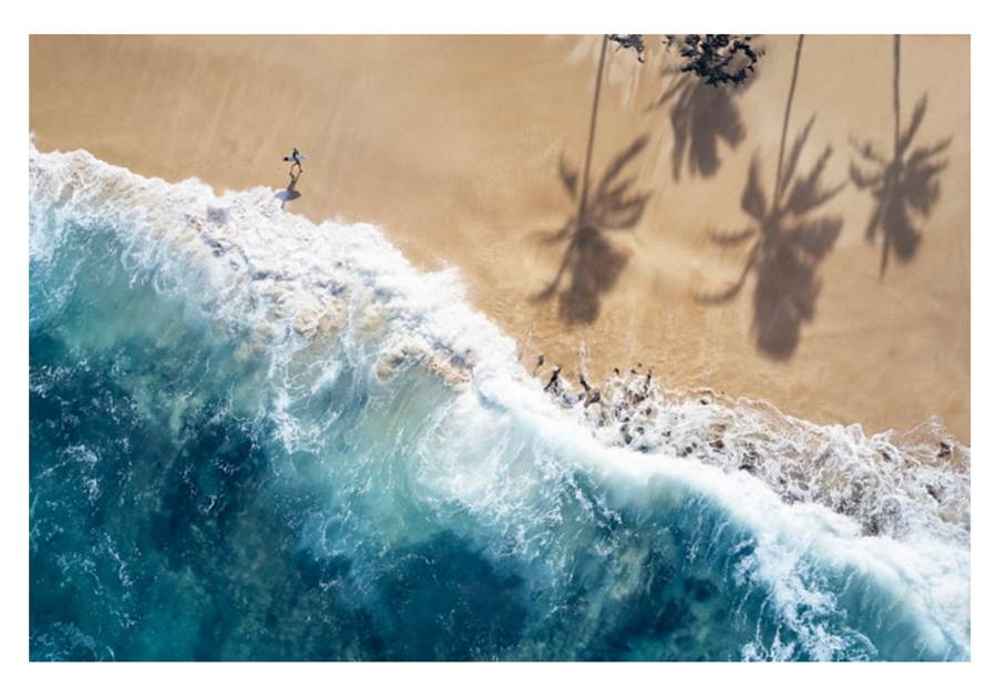 Surf photography print of a surfer walking on beach with surfboard